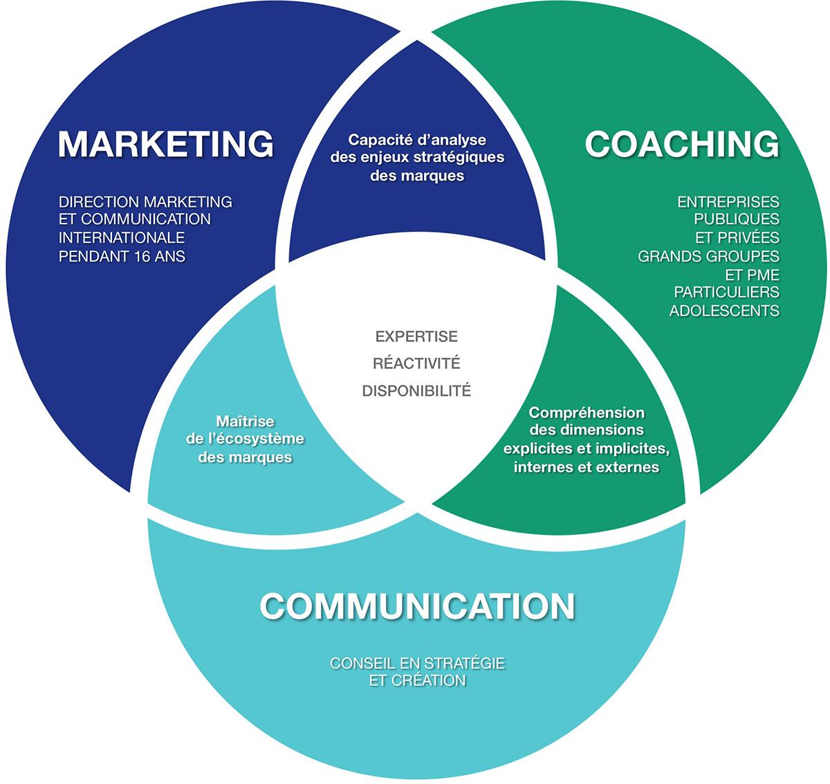 Marketing : capacité d'analyse des enjeux stratégiques des marques. Communication : maîtrise de l'écosystème des marques. Coaching : compréhension des dimensions explicite et implicites, internes et externes.